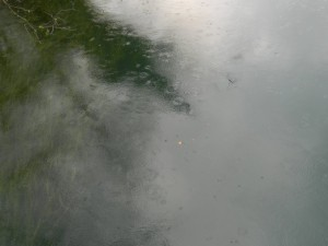 pioggiamerc
