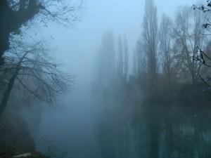 nebbiaven